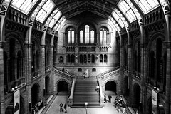 Natural History Museum — Architecture # London # 2011