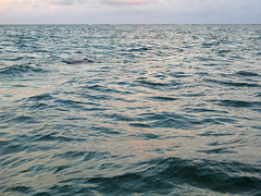 Seahorse Snorkel And Sailing Excursions