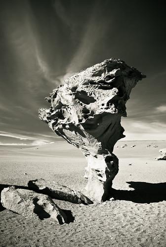 travel sky blackandwhite white black tree rock stone arbol mono sand nikon desert bolivia tamron piedra arboldepiedra d80