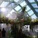 Denver Botanic Gardens DSC_4479 by jeffrojr