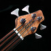 Rob Allen MB-2 Bass: Bound Koa Headstock