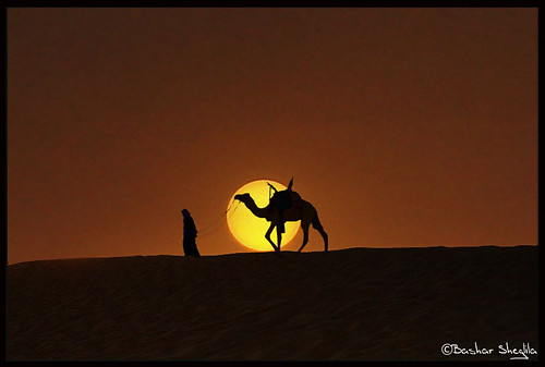 world africa sunset sun sahara photography amazing photographer desert photos top photographers best camel photograph worlds شمس libya camels camello bashar من lybia touareg tuareg صور libyan ghadames libia libye غروب جمال camellos libyen صحراء الشمس ليبيا líbia جمل ابل libië libiya بشار الليبية liviya ghadamis الجماهيرية libija ليبية غدامس طوارق ليبي bentaher либия توارق شقليلة sheglila ливия تارقي լիբիա ลิเบีย lībija либија lìbǐyà libja líbya liibüa livýi λιβύη ايموهاغ هقار