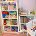 New Bookcase by learning parade