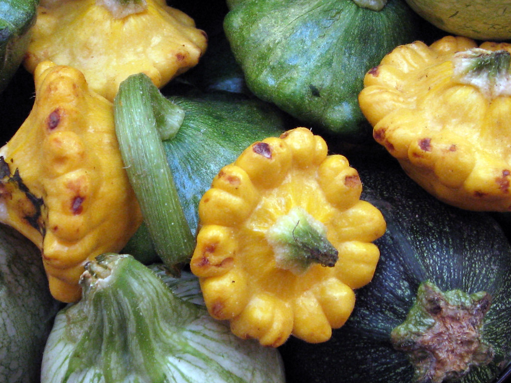 scallop squash pattypan squash, summer, raw