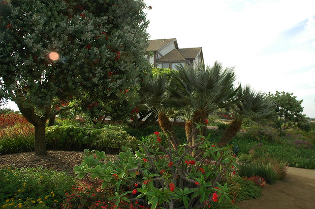Meditation Garden Self Realization Fellowship Encinitas California Usa3452 Flickr Photo