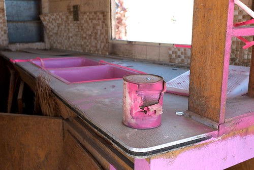 Pink Paint | The Salton Sea