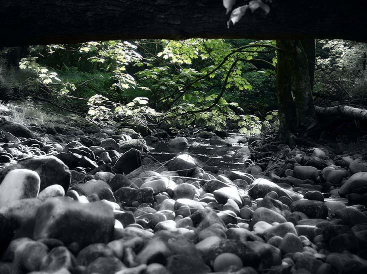 Photography - Beneath by Nicholas M Vivian