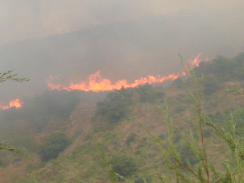 Vasto incendio intorno a Cefalù, oltre i 1500 gli ettari bruciati$