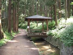 Path to Jigokudani