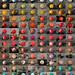 Buoys, buoys, buoys by Alex Bamford