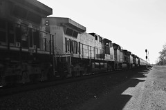 Train Rolls On..