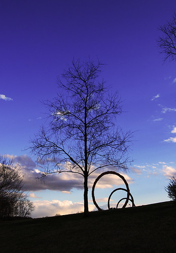 sky tree art nature silhouette museum eos artwork north wide carolina 1022 gyre 50d