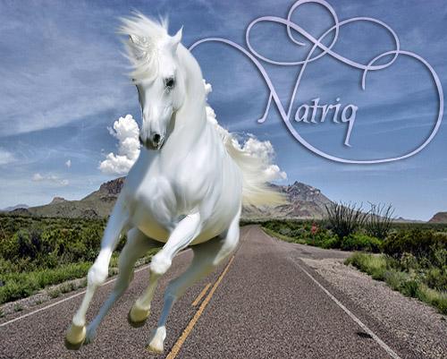 natriq carrie