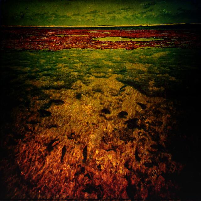 Bahian Sea