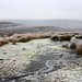 Small photo of Swaledale