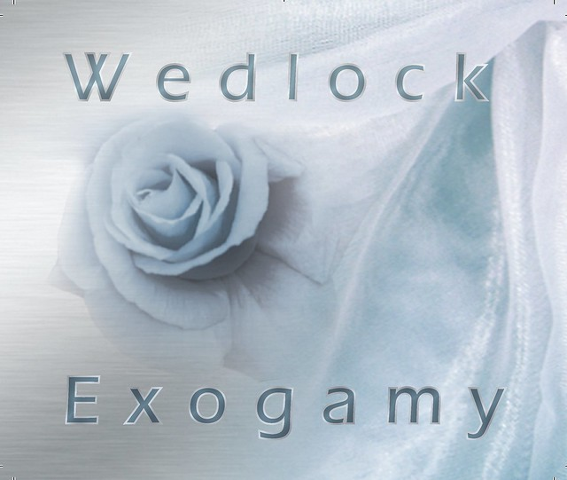 Wedlock Definition/meaning