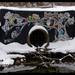 Kzoo Owl Tree winterscape by Bonus Saves