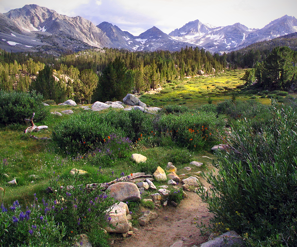Rving in inyo national forest for Sierra valley