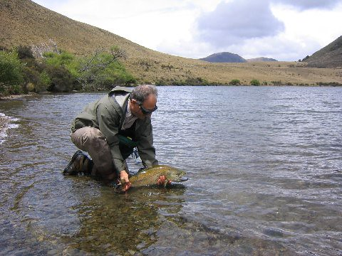 Fly fishing new zealand backwater angler for Fly fishing new zealand
