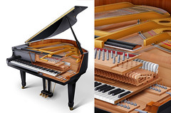 Grand piano cutaway small flickr photo sharing for Small grand piano