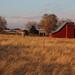 Red Barn & Setting Sun