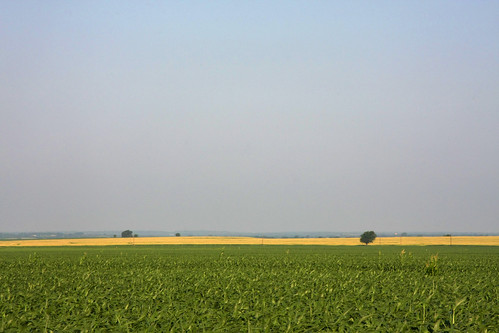 the endless rural landscape