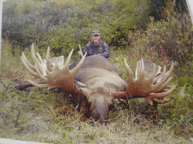 World record moose weight - photo#9