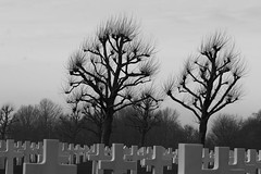 Margraten, American Cemetery