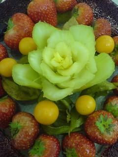 Winter Celery Flower