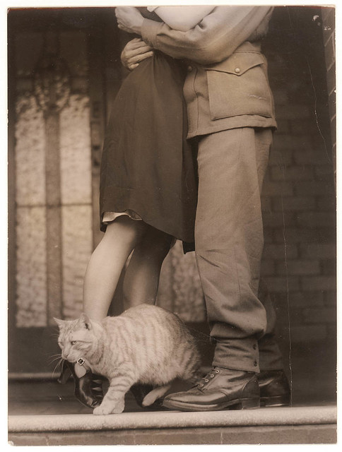 Soldier's goodbye & Bobbie the cat, ca. 1939-ca. 1945 / by Sam Hood