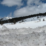 Snowy hillsides in Tahoe National Forest