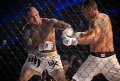 striking combat sports, individual sports, contact sport, sports, combat sport, shoot boxing, strike, punch,