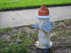 water feature(0.0), water(0.0), sculpture(0.0), yard(0.0), lighting(0.0), art(1.0), fire hydrant(1.0),