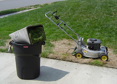 asphalt(0.0), vehicle(0.0), outdoor power equipment(1.0), edger(1.0), tool(1.0), lawn mower(1.0), lawn(1.0),