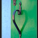 Il cuore di Burano - Venezia by PJ Franz