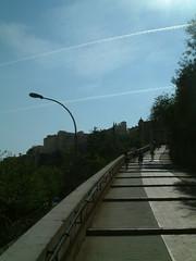 Monaco (51)