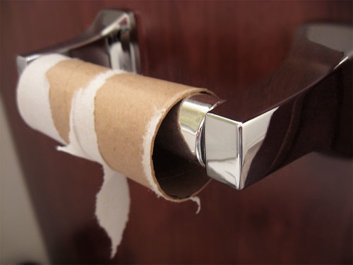 Don 39 t throw out empty toilet paper rolls pays to live for Craft ideas using empty toilet paper rolls