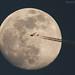 Fly Emirates by mohammad khorshid (boali)