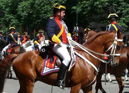 spanish horse