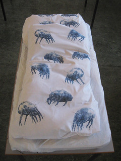 house dust mite bed