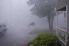 rain(0.0), snow(0.0), blizzard(0.0), freezing(0.0), fog(1.0), drizzle(1.0), haze(1.0), winter storm(1.0), mist(1.0),