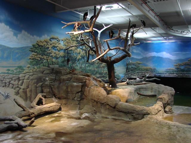 2008 03 16 Camden 007 New Jersey State Aquarium Explore