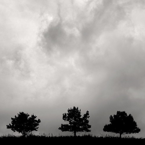 trees sky blackandwhite bw storm tree silhouette clouds canon landscape three triptych brothers dcist cropped shenandoah 1001nights eos10d squarecrop bigmeadows shenandoahnationalpark tklancer