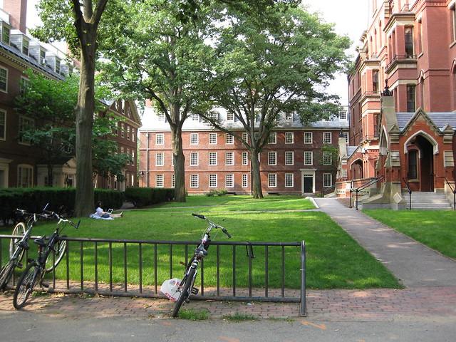Near Straus Hall, under a tall tree, alone with Harvard WiFi and her Mac - Dessous un grand arbre, seule avec réseau étendu et sa Mac à Harvard