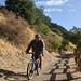 Small photo of Bicyclist on the Creek Trail in Alum Rock Park