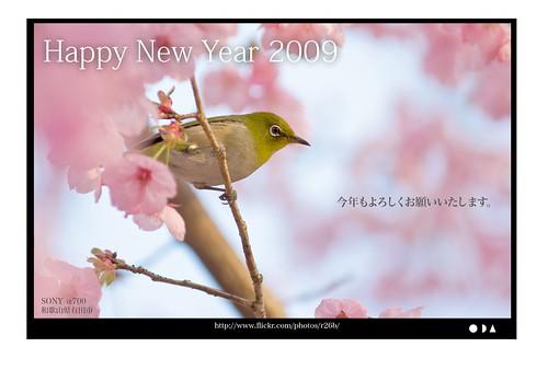 Happy New Year 2009 - 無料写真検索fotoq