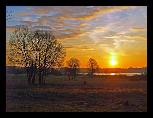 morning sky sun tree landscape puu päike hommik firstquality maastik taevas 35faves päikesetõus olympuse400 welcometoestonia superaplus aplusphoto infinestyle theunforgettablepictures janne4janne goldstaraward