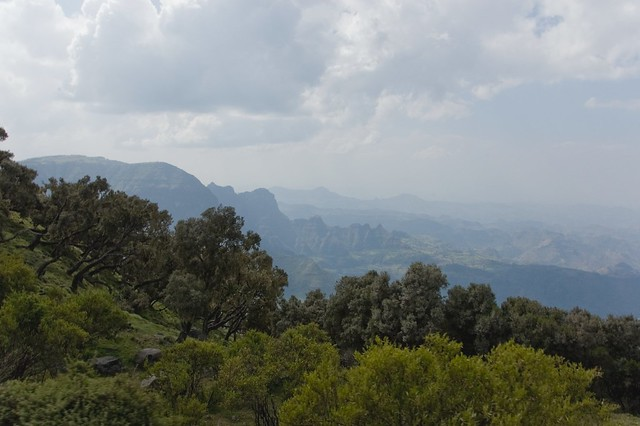 Parque nacional de Simien, macizo de Abisinia, Etiopía.
