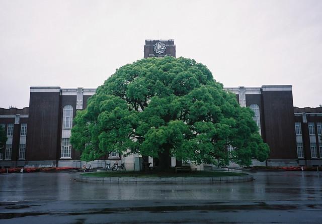 Kyoto University - 1 |...