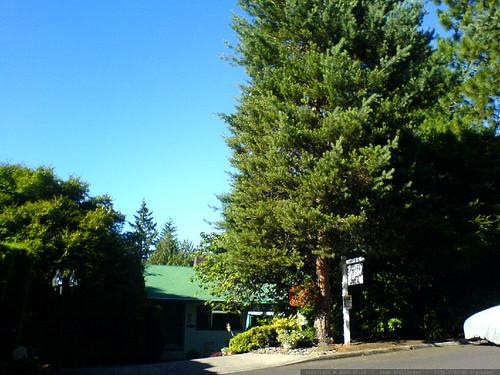 home for sale in lake oswego   DSC01423